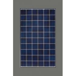 Solarpanels BENQ 260W GreenTriplex