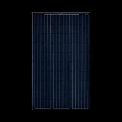 SOLARWORLD Solarmodule SW 290 MONO Schwarz