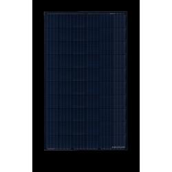 I'M PREMIUM Solarmodule 270P Schwarz